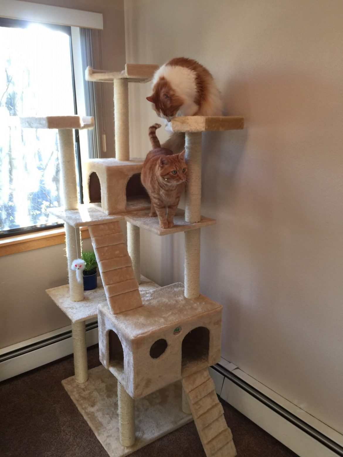 Go Pet Club 72 Inch Cat Tree For Large Cats
