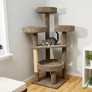 65 inch tall, brown, carpeted cat tree for large cats